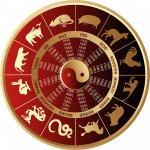 De 12 Dieren Uit de Chinese Horoscoop & Hun Unieke Eigenschappen
