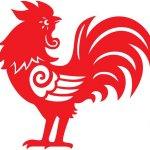 Chinese Horoscoop Haan: Unieke Eigenschappen, Liefdesleven + Tips