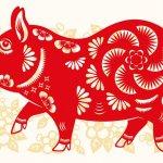 Chinese horoscoop Varken: Unieke eigenschappen, liefdesleven + tips